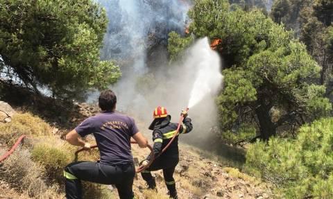 Πύρινη κόλαση στα Δερβενοχώρια - Μαίνεται ανεξέλεγκτη η φωτιά