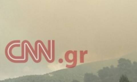 Φωτιά Δερβενοχώρια: Αποκλειστική δήλωση του αντιδημάρχου στο CNN Greece