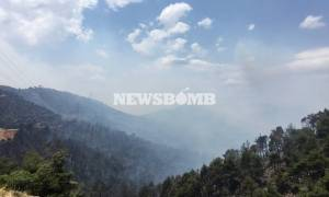 Καίει ανεξέλεγκτη σε δύο μεγάλα μέτωπα η φωτιά στα Δερβενοχώρια