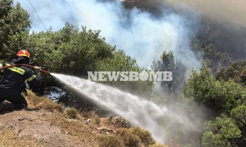 Φωτιά Δερβενοχώρια: Οι φλόγες περικύκλωσαν την κοινότητα Στεφάνη - Κατευθύνονται προς το Πράσινο