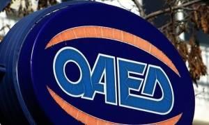 ΟΑΕΔ: Προϋποθέσεις και όροι για προγράμματα με χρήση του ΛΑΕΚ