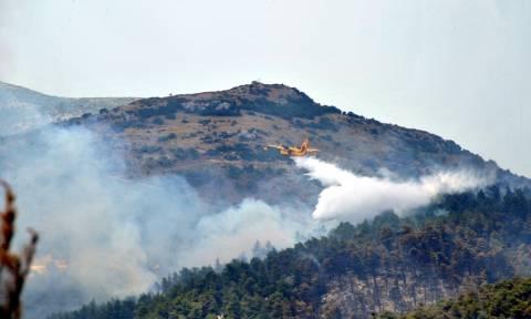 Δερβενοχώρια: Η νεροποντή έσβησε την φωτιά που έκαιγε για τέσσερις μέρες