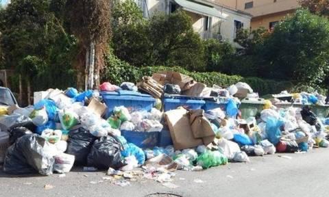 Κέρκυρα: Ξεκίνησε η αποκομιδή των σκουπιδιών