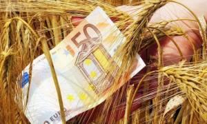 ΟΠΕΚΕΠΕ: Δόθηκαν στους αγρότες 20,4 εκατ. ευρώ