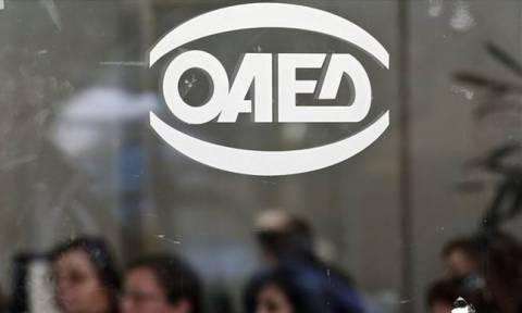 ΟΑΕΔ: Πότε ξεκινούν οι αιτήσεις για πρόσληψη εκπαιδευτικού προσωπικού