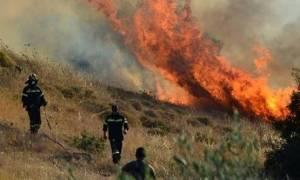 В Греции объявлен «красный» уровень опасности возникновения пожаров