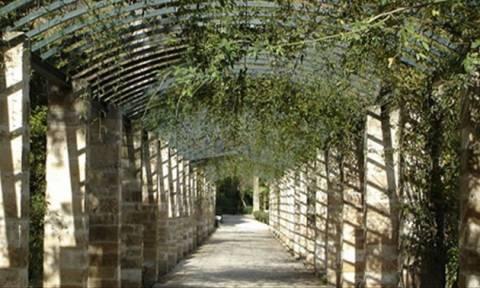 Πέντε κρυφά καφέ - κήποι Μουσείων στην Αθήνα