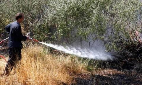 Υπό μερικό έλεγχο η φωτιά στον Πάρνωνα - Στάχτη έγιναν 150 στρέμματα