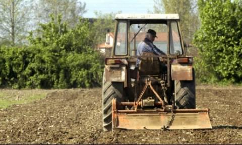 ΟΓΑ: Έως 16/7 οι αιτήσεις για τα προγράμματα της Αγροτικής Εστίας