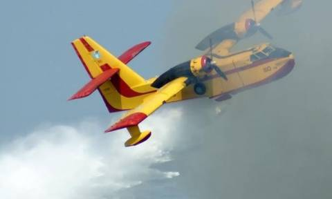 Φωτιά Νεοχώρι: Συνεχίζεται η μάχη με τις φλόγες - Ενισχύονται οι δυνάμεις της πυροσβεστικής