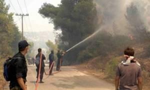 Лесной пожар в Рафине охватывает все новые территории