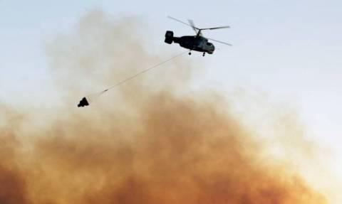 ΤΩΡΑ: Φωτιά στη Χαλκιδική – Κοντά σε μεγάλο ξενοδοχείο οι φλόγες