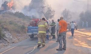 На Хиосе бушует пожар, сгорели жилые дома, сотни гектаров леса и фермерские угодья