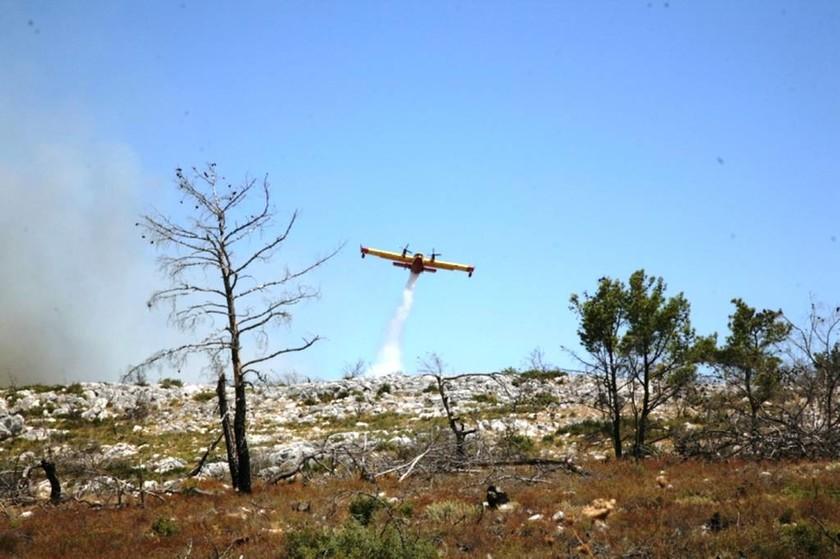 Μαίνεται το πύρινο μέτωπο στη Χίο - Αγωνία για την νύχτα (photos - videos)