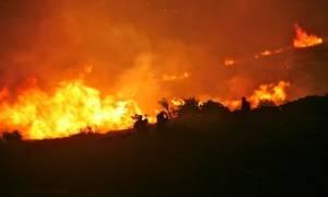 Πάτρα: Συναγερμός για μεγάλη φωτιά στην περιοχή Βούντενη