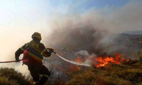Θεσσαλονίκη: Πυρκαγιά σε δασική έκταση στη Νέα Ραιδεστό