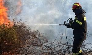 В Салониках произошел пожар, угрозы возгорания населенных пунктов нет