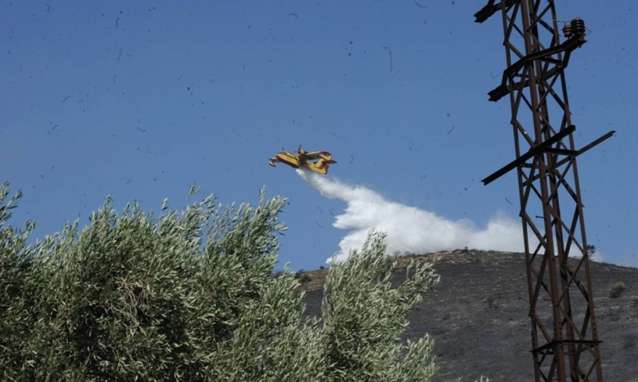 Μεγάλη πυρκαγιά στη Βόρεια Εύβοια