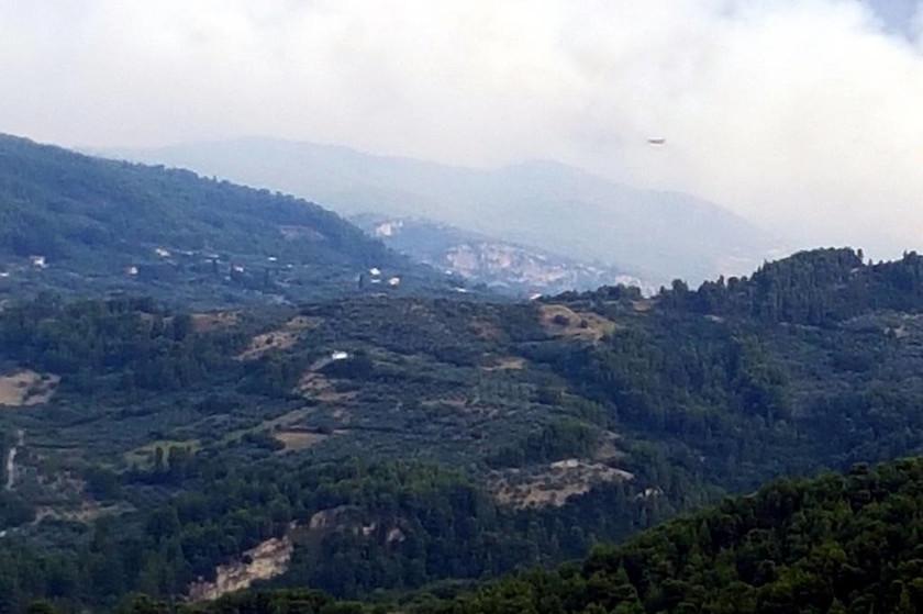 Πύρινη κόλαση στη βόρεια Εύβοια: Στάχτη χιλιάδες στρέμματα πευκοδάσους