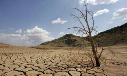 Ερημοποίηση και ξηρασία απειλούν το Λασίθι