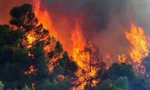 Φωτιά στο Ρέθυμνο: Ώρες αγωνίας για τρία άτομα - Εγκλωβίστηκαν σε παραλία