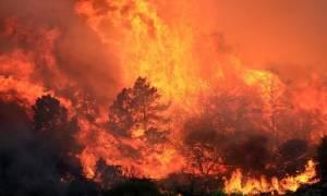 ΗΠΑ: Υπεράνθρωπη μάχη με τις φλόγες στην Καλιφόρνια