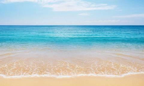 Κρήτη: Και ξαφνικά όλοι «πάγωσαν» στην παραλία – Κανείς δεν πίστευε αυτό που έβλεπε