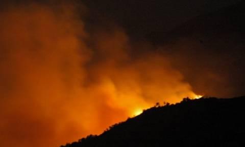 Συναγερμός στην Πυροσβεστική για φωτιά στα σύνορα με τα Σκόπια