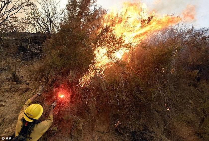 Ισπανία: Φονική πυρκαγιά από άνδρα που... έκανε την ανάγκη του! (pics)