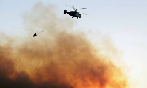 Φωτιά Αργολίδα: Κατακαίει δασική έκταση - Δεν απειλούνται κατοικίες
