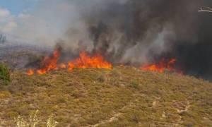 Σε εξέλιξη πυρκαγιά στο Ηράκλειο Κρήτης