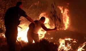Έσβησε η πυρκαγιά στους Θρακομακεδόνες