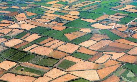Δηλώνονται ξανά στο Ε9 τα αγροτεμάχια για τον ΕΝΦΙΑ