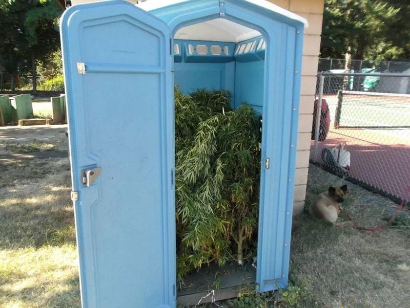 Απίστευτο: Τι έκρυβε η υπαίθρια τουαλέτα σε πάρκο του Όρεγκον; (pics)
