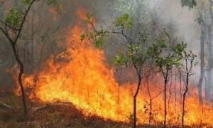 Ανεξέλεγκτη η φωτιά στο Δοξάτο Δράμας