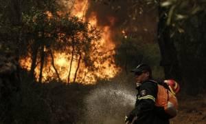 Νεκρός Πυροσβέστης  στη μεγάλη φωτιά της Βοιωτίας