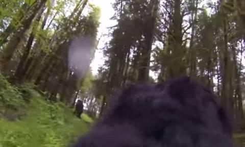 Τι συνέβη όταν ένας σκύλος συνάντησε τον Μεγαλοπόδαρο! (video)