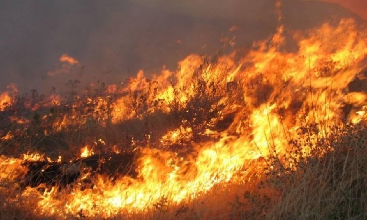 Πυρκαγιά στην Εύβοια - Βρέθηκε απανθρακωμένο πτώμα