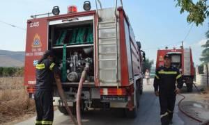 Μεγάλη πυρκαγιά σε επιχείρηση με ξυλεία στο Κορωπί