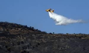 Καλάβρυτα: Πυρκαγιά κατακαίει ελατόδασος πάνω από την Ιερά Μονή Μεγάλου Σπηλαίου