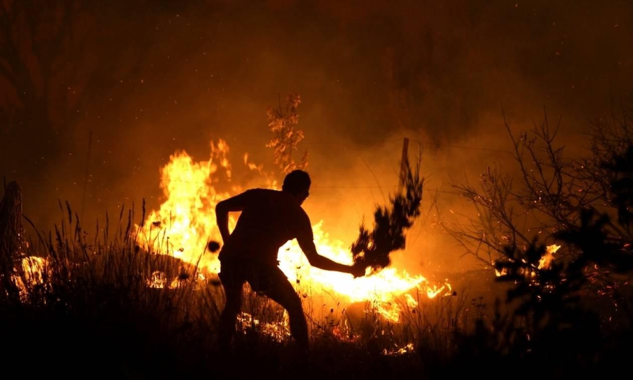Στις φλόγες η Δυτική Ελλάδα – Σε εξέλιξη τέσσερις πυρκαγιές