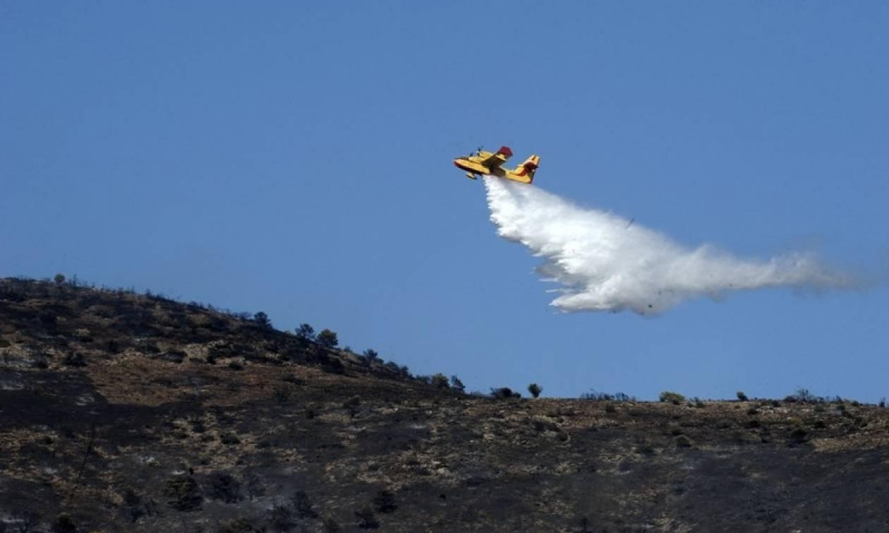 Υπό μερικό έλεγχο η πυρκαγιά στο Κατσαρώνι Ευβοίας
