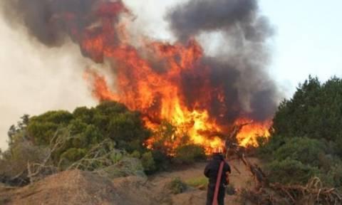 Μεγάλη πυρκαγιά από ανάφλεξη Ι.Χ. στο Έλος Χανίων