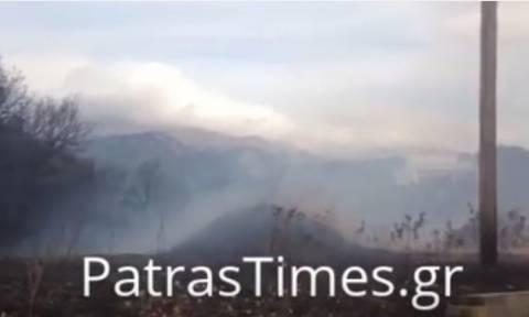 Μια ανάσα από κατοικημένη περιοχή μεγάλη φωτιά στην Πάτρα (vids)