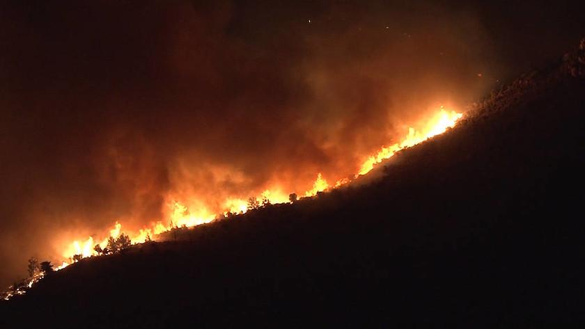 Φωτιά Χίος: Οι φλόγες αποτελείωσαν το νησί της μαστίχας (pics)