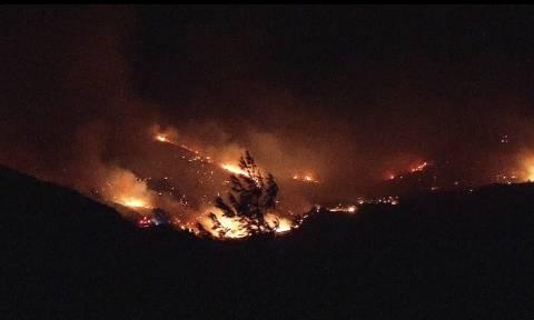 Σε ύφεση η πυρκαγιά στην Χίο (pics&vids)