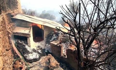 Φωτιά στη Χίο: Ύφεση μετά την καταστροφή