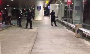 Ένας Ζορό «έσπειρε τον πανικό» στο αεροδρόμιο του Λος Άντζελες (βίντεο)