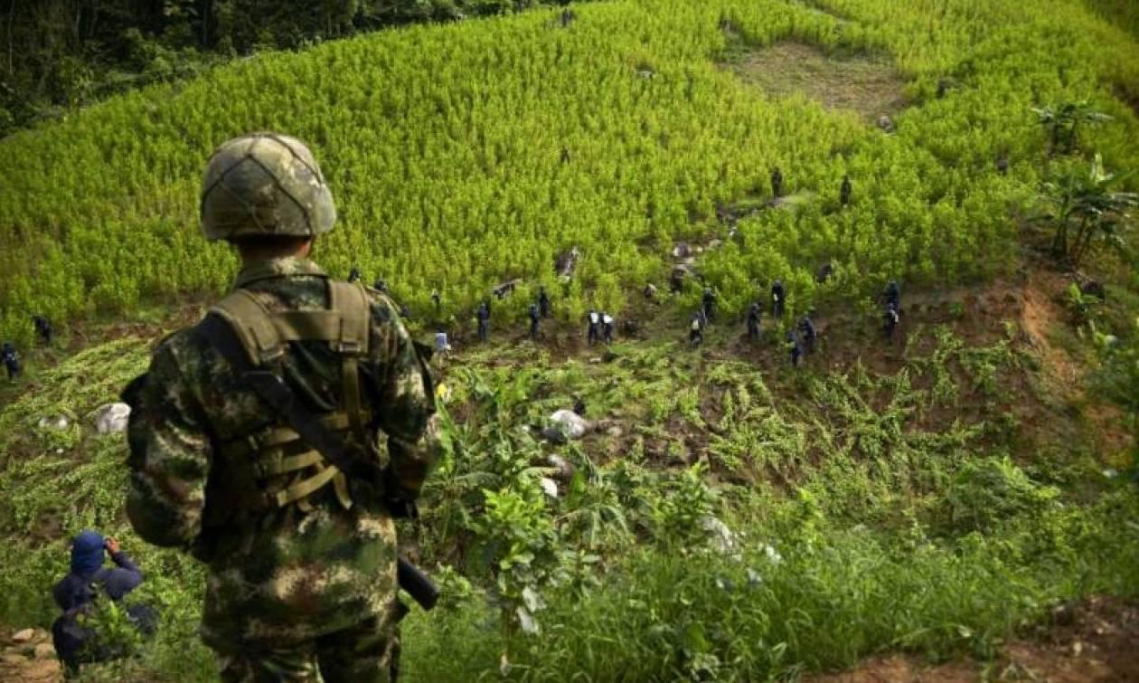 Εκατοντάδες κιλά κοκαΐνης κατασχέθηκαν στην Κολομβία