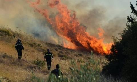 Μεγάλη φωτιά στην Ζάκυνθο στο χωριό Κοιλιωμένος